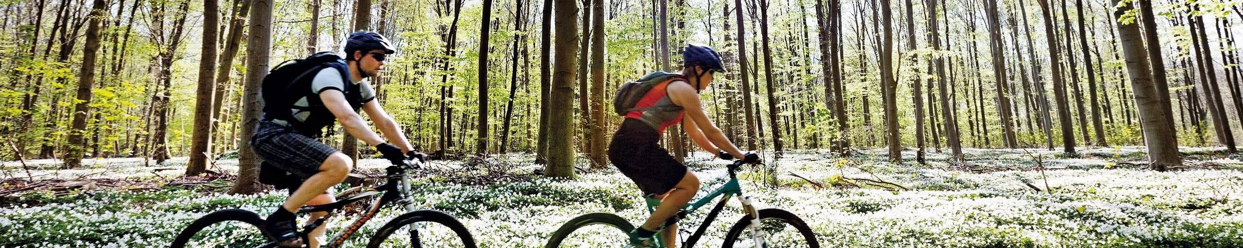 Diebstahl Aus Zelt Versicherung : Bike versicherung zurich schweiz